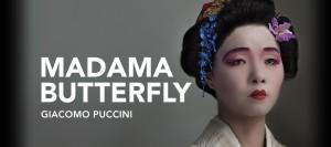 Butterfly_Header2